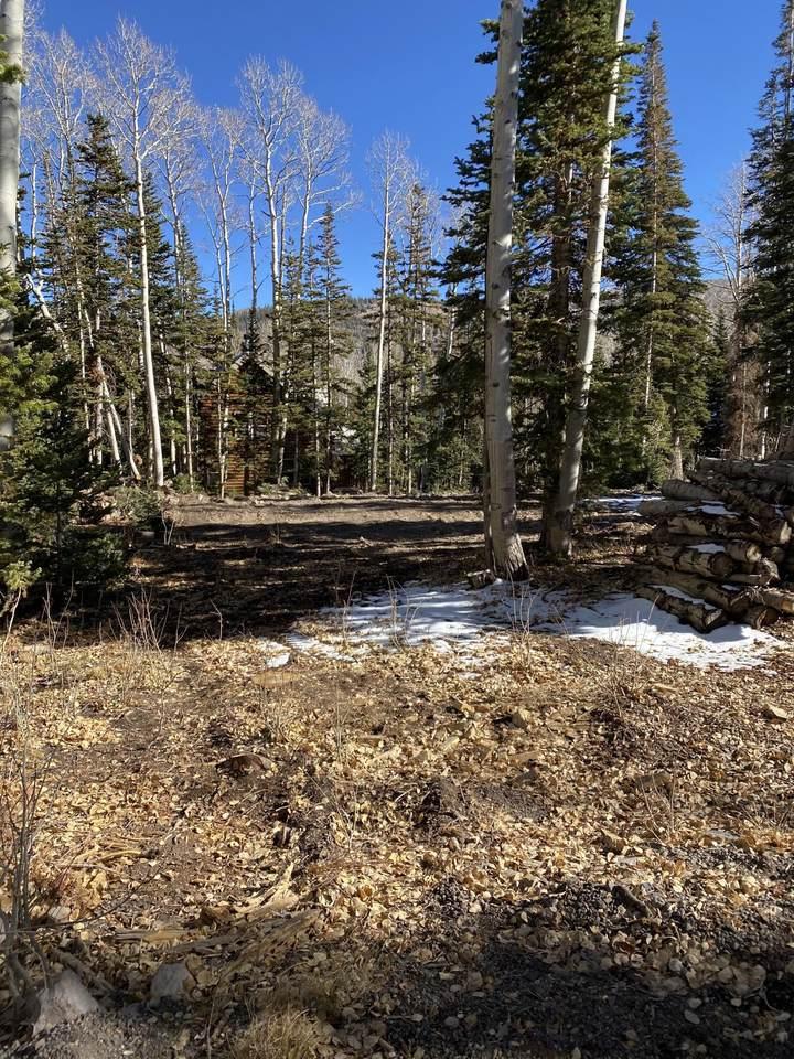 430 Elk Dr - Photo 1