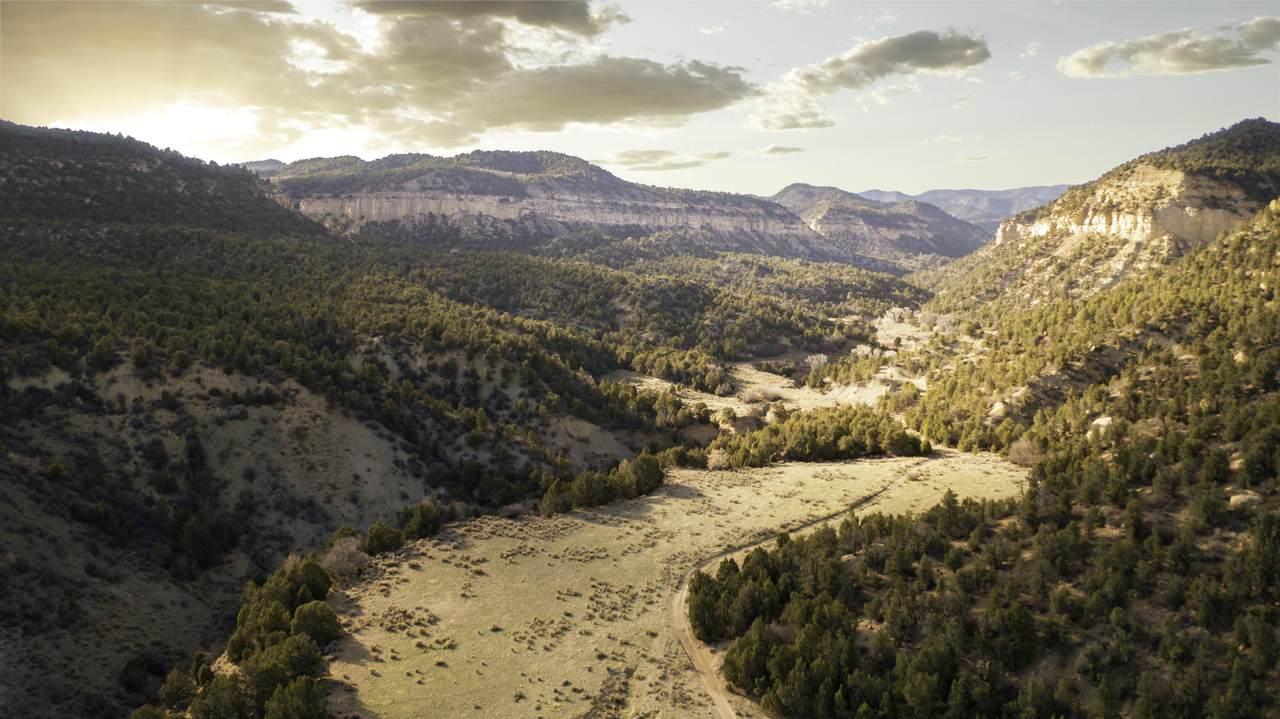 160 Acres Muddy Creek Rd - Photo 1