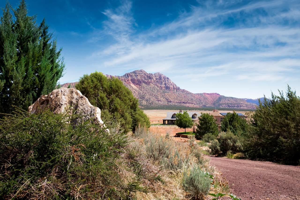 1447 Mount Zion Dr - Photo 1