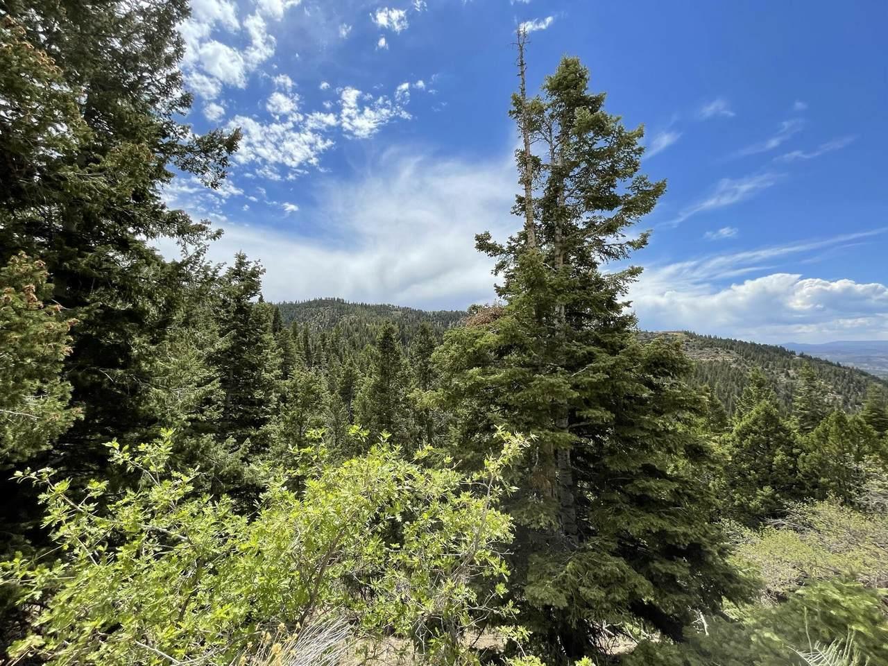 Cedar View Cir - Photo 1