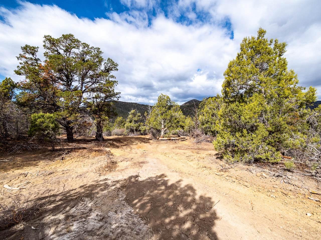31 Acres Drywash Canyon - Photo 1