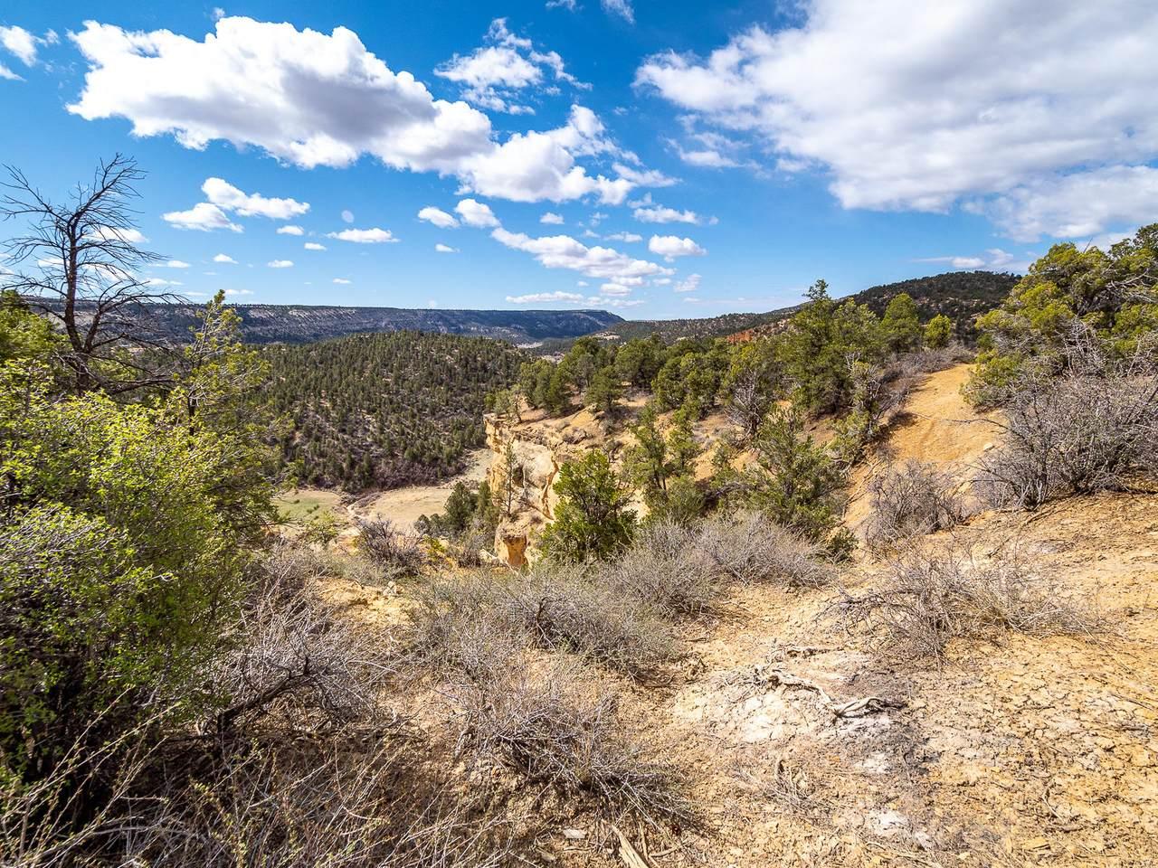 11 Acres Drywash Canyon - Photo 1