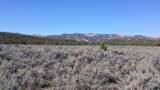 Flatlands Pkwy - Photo 1