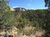 O-181-12 Rabbit Brush Pl - Photo 1