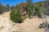 Lot 6 Block 3 Zion Hunting Estates - Photo 7