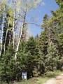 5415 Deer Trail - Photo 1