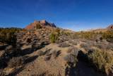 2550 Anasazi Way - Photo 10