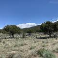 680 Heritage Hills Dr - Photo 11