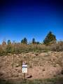 Whispering Pines Lot#4 - Photo 1