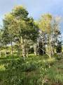 Whispering Pines Lot #22 - Photo 21