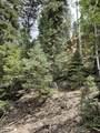Knobcone Pine Dr - Photo 1