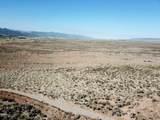 259.47 Acres - Photo 11
