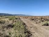 259.47 Acres - Photo 2