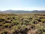 259.47 Acres - Photo 7
