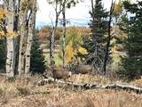 Whispering Pines Lot#42 - Photo 1