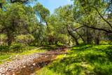 200 Canyon Road, Tax ID #7026 - Photo 32
