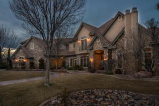 2323 E Bella Rosa Dr, St George, UT 84790 (MLS #17-182340) :: Remax First Realty