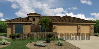 1136 W Desert Sparrow Dr Dr, St George, UT 84790 (MLS #17-183446) :: Remax First Realty