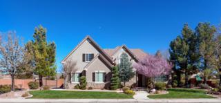 600 Riesling Ave, Santa Clara, UT 84765 (MLS #17-183461) :: Remax First Realty