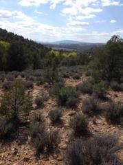 23.73 Acres, St George, UT 84770 (MLS #17-183494) :: Remax First Realty