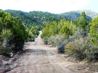 39.53 Acres, New Harmony, UT 84757 (MLS #17-183556) :: Remax First Realty