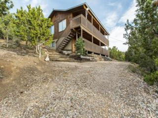 306 Cave Cir, Central, UT 84722 (MLS #17-183577) :: Remax First Realty