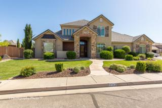 2243 Preston Ave, Santa Clara, UT 84765 (MLS #17-184157) :: Remax First Realty