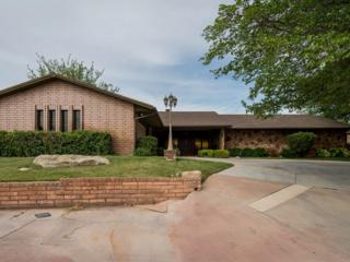 1144 W Bloomington Dr S, St George, UT 84790 (MLS #17-184236) :: Remax First Realty