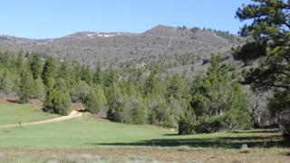 Lot 33 Meadow Dr, Virgin, UT 84779 (MLS #17-184325) :: Remax First Realty