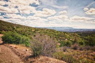 Zion Panorama Phase 3 - Lot 4, Virgin, UT 84779 (MLS #17-184505) :: Remax First Realty