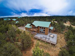 620 S Zion Ridge Dr, Mt. Carmel, UT 84755 (MLS #17-184979) :: Remax First Realty