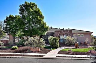 154 N Painted Hills, Ivins, UT 84738 (MLS #17-185091) :: Susan Hansen Realty Group
