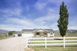 584 S 3430 E, New Harmony, UT 84757 (MLS #17-185146) :: Remax First Realty