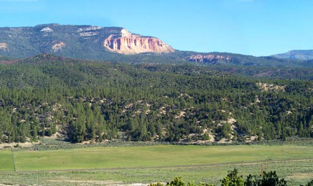 Hwy 12 Mile Marker 46, Escalante, UT 84726 (MLS #17-187236) :: Remax First Realty