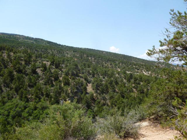 Address Not Published, Cedar City, UT 84720 (MLS #17-187333) :: Remax First Realty