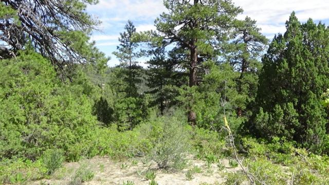 20 Acres Cox Dr, Virgin, UT 84779 (MLS #17-187386) :: Remax First Realty