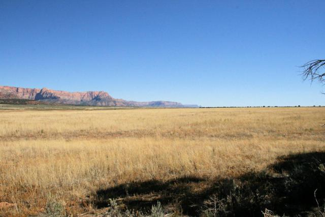 160 Acres Coyote Rd, Apple Valley, UT 84737 (MLS #17-188691) :: Remax First Realty