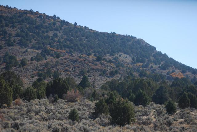 84 Acres West Of Enterprise, Enterprise, UT 84725 (MLS #17-189209) :: Saint George Houses