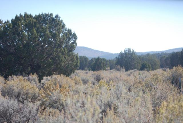 17.5 Acres Meadow Canyon Rd, Enterprise, UT 84725 (MLS #17-190103) :: Remax First Realty