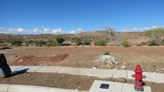 Lot 221 Girls Pond Cir, Santa Clara, UT 84765 (MLS #17-190158) :: Diamond Group