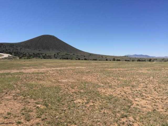 62.30 Acre Highway 18, Veyo, UT 84782 (MLS #18-194115) :: Diamond Group