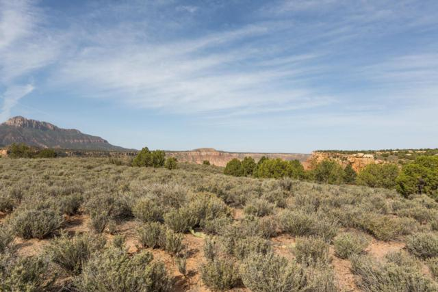 Anasazi Way #48, Springdale, UT 84767 (MLS #18-194206) :: Saint George Houses
