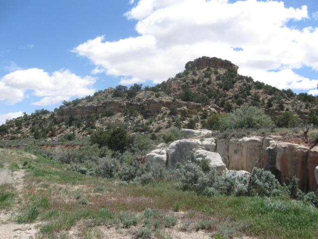 63 Ac Hwy 12, Escalante, UT 84726 (MLS #18-195247) :: The Real Estate Collective