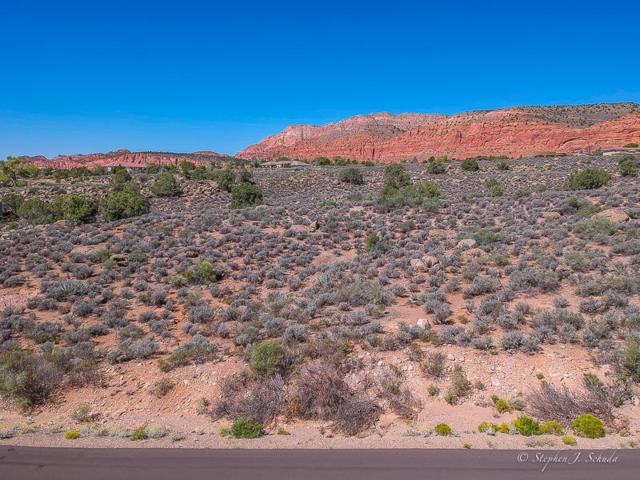 Lot 12 Juniper Way, Leeds, UT 84746 (MLS #18-197474) :: Remax First Realty