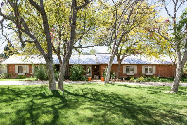 1035 W Coyote Way, Dammeron Valley, UT 84783 (MLS #18-197547) :: Saint George Houses