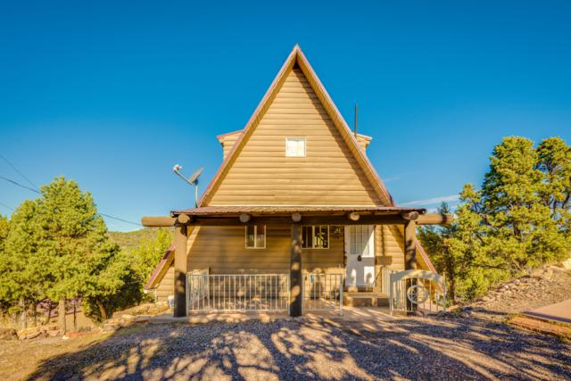 176 E Valley View Rd, Central, UT 84722 (MLS #18-198158) :: Diamond Group
