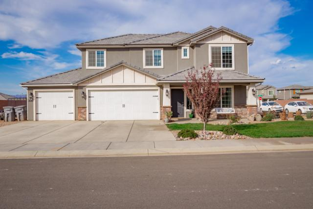 3049 E Livia Dr, St George, UT 84790 (MLS #18-198645) :: Remax First Realty