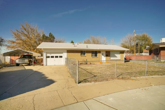 756 N Ann St, Clearfield, UT 84015 (MLS #18-199180) :: Remax First Realty