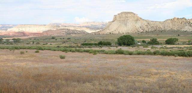 West Field Loop Road South, Henrieville, UT 84736 (MLS #18-199510) :: The Real Estate Collective