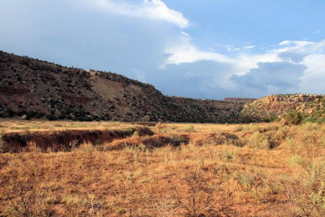 109.39 Acres Dalton Wash Road, Virgin, UT 84779 (MLS #19-201310) :: Red Stone Realty Team